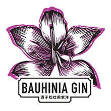 BAUHINA GIN